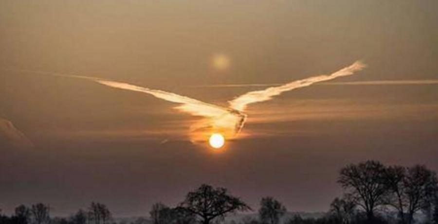 Sol Voador